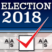 Vote in the 2018 AAS Election
