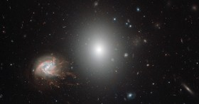 Coma Cluster Galaxies